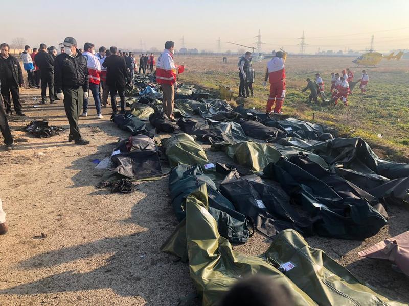 اسامی دانش آموختگان جانباخته دانشگاه تهران در حادثه سقوط هواپیمای اوکراینی منتشر شد
