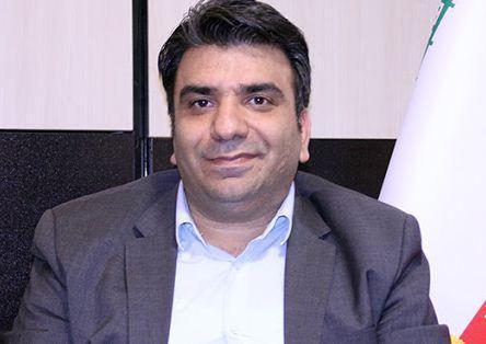 اتحادیه نان های حجیم: امکان تخلف در فروش آرد صفر است